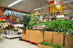 Home improvement store. Koçtaş, home improvement store, garden section royalty free stock images