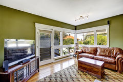 Home interior in green color with rich leather couch stock images