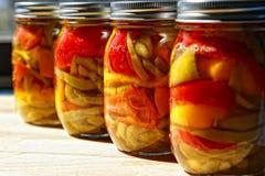 home jarspeppar på burk Royaltyfria Bilder