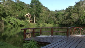 Home in the lake stock video footage