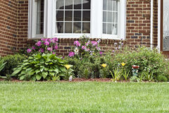 Home Landscaping Stock Images
