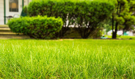 Home Lawncare Royalty Free Stock Images