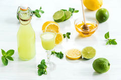 Home lime liquor in a glass and fresh lemons, limes on the white wooden background Stock Photo