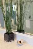 home lyx för badrum Arkivbilder