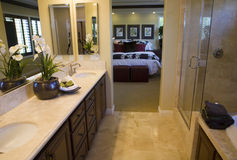 home lyx för badrum Royaltyfri Fotografi