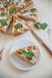 Home made apricot almond cake Royalty Free Stock Photos