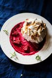 Home made Baked alaska Royalty Free Stock Images
