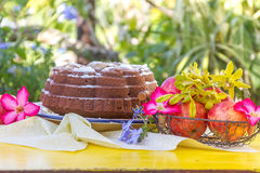 Home-made banana apple cake on natural background Royalty Free Stock Photography