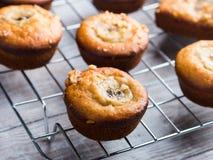 Home made banana muffins. Closeup Royalty Free Stock Photo