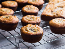 Home made banana muffins. Closeup Stock Photos