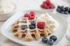 Home made Belgian waffles Stock Image