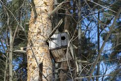 Bird house on tree Stock Image