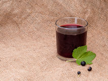 Home made blackcurrant juice cordial in glass. Stock Photography