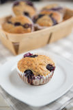 Home made Blueberry Muffins Stock Photos