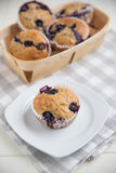 Home made Blueberry Muffins Stock Images