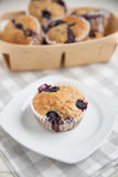 Home made Blueberry Muffins Stock Image