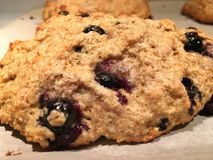 Home made blueberry scone Royalty Free Stock Photography