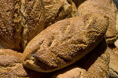 Home Made Bread. Freshly baked home made bread Stock Images