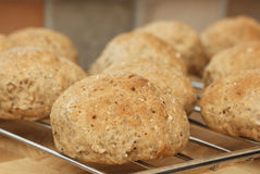Home made bread rolls fresh from the oven Stock Photography