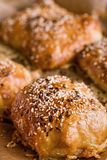 Home-made bread with sesame seed Royalty Free Stock Image
