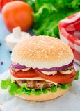 Home made burger Royalty Free Stock Images