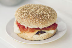 Home made burger. On a plate isolated Royalty Free Stock Images