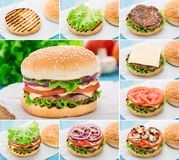 Home made burger. Step by step. Royalty Free Stock Photography