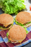Home made burgers Stock Images