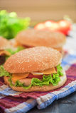 Home made burgers Royalty Free Stock Photos