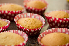 Home Made Cakes Royalty Free Stock Photography