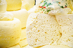 Home made cheese Royalty Free Stock Photo