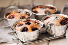 Home made cherry cake with vanilla and icing sugar Royalty Free Stock Image