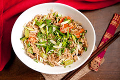 Home made chicken stir fry Royalty Free Stock Photo
