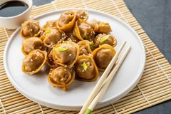 Home made chinese and korean dumplings served on the traditional steamer and bamboo mat decorated with soy sauce royalty free stock photography
