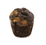 Home made chocolate chip muffin Royalty Free Stock Photos