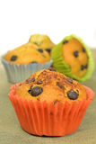 Home made chocolate chip muffins Royalty Free Stock Photo