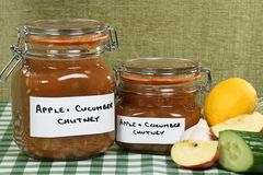 Home made chutney apple and cucumber Royalty Free Stock Photo