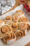 Home made Cinnamon Rolls Stock Photography
