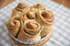 Home made Cinnamon Rolls Stock Image