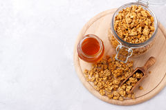 Home made coconut granola Royalty Free Stock Photography