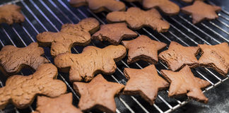 Home made gingerbread cookies Stock Photos