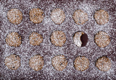 Home made cookies on a brown cookie sheet. Stock Photography