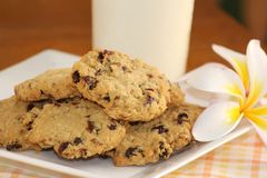Home made Cranberry Cookies 2 Royalty Free Stock Photography