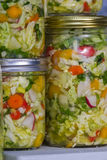 Home made cultured or fermented vegetables. In  glass jars Stock Image