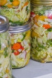 Home made cultured or fermented vegetables. In  glass jars Royalty Free Stock Image