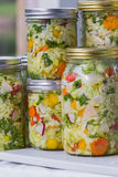 Home made cultured or fermented vegetables Royalty Free Stock Photo