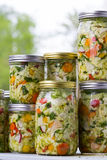 Home made cultured or fermented vegetables. In  glass jars Royalty Free Stock Photo