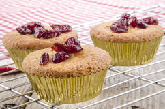 Home made cupcake with dried cranberries Stock Image
