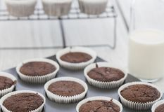 Home made cupcakes. On wooden back  ground Stock Image