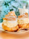 Home made delicious vanilla, cream puff, Profiterole.  Stock Photos